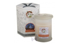 Soy Wax Container Candle (Australian Sandalwood)